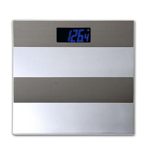 Stainless Steel Electronic Scale